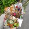 Thai Som Tam Street Vendor